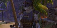 Baan Dar's Rogue