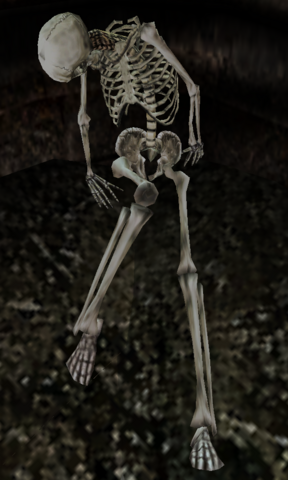 File:Corpse of a lost sailor.png