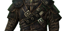 Guild Master's Armor