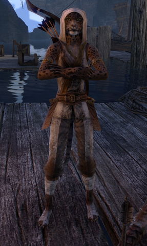 File:ESO Zulana Second Costume.png