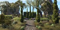 Formal Garden Shrubbery