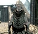 Knight-Paladin Gelebor