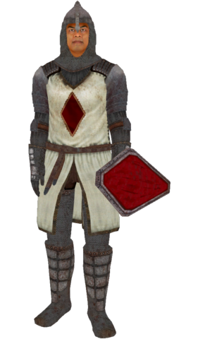 File:KnightsoftheNineArmor.png
