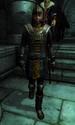 TESIV Character Captain Renault
