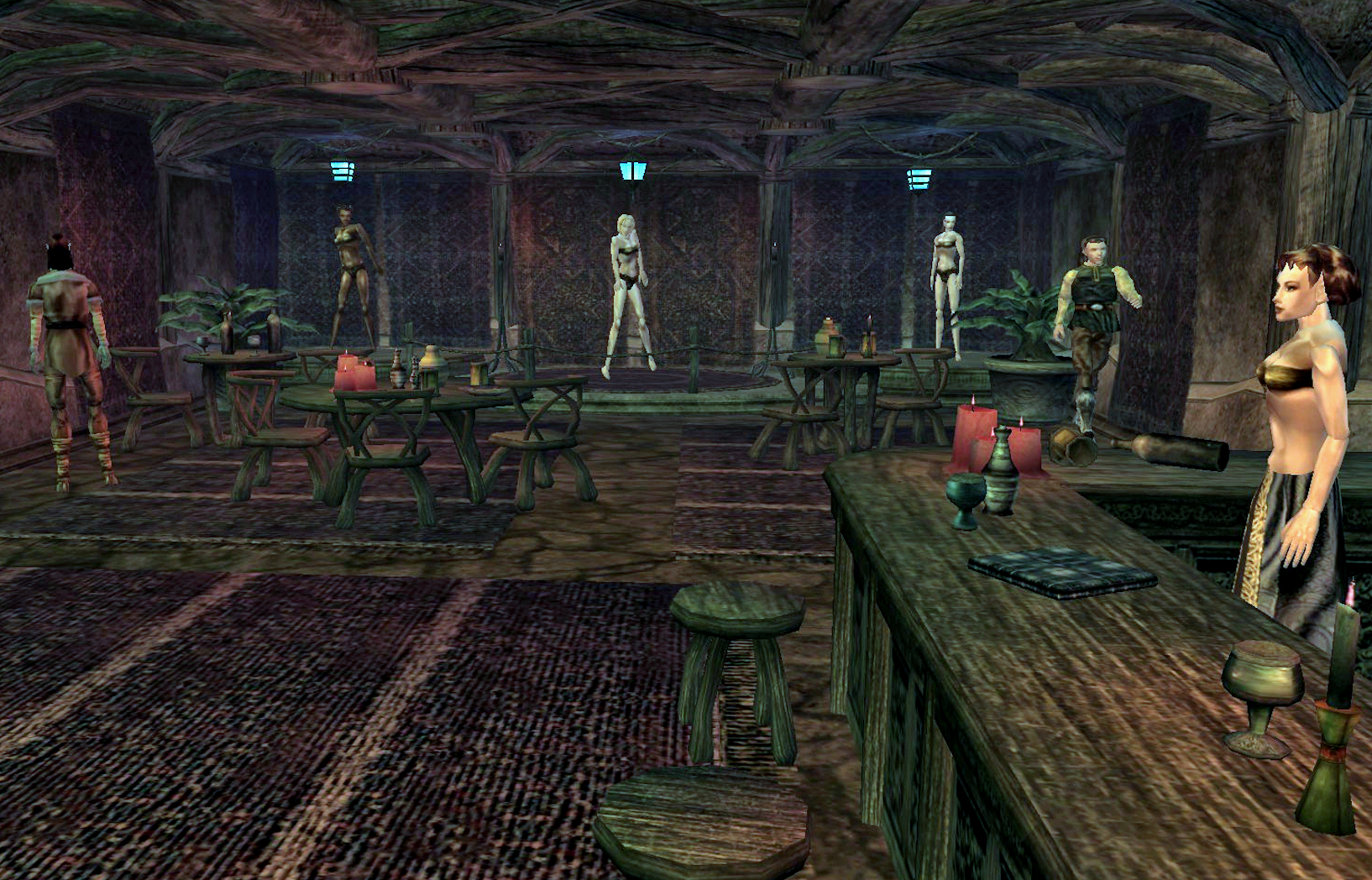 Housing Npcs What Type Do You Want For Your Home Elder Scrolls
