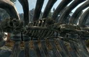 Swallowed Skeleton Inside