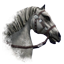 Imperial Horse Online