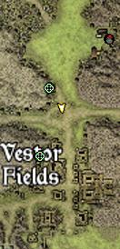 MapVestorFields