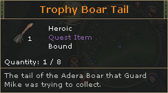 TrophyBoarTail