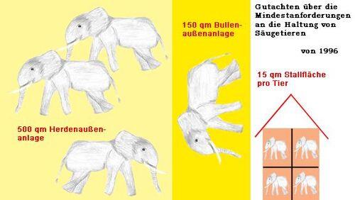 Elefantenhaltung.jpg