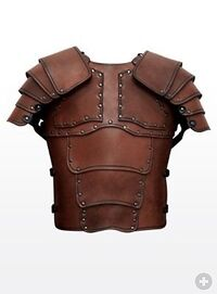 Leather-Armour