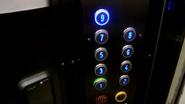 DMG blue buttons
