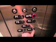 TK aurora buttons