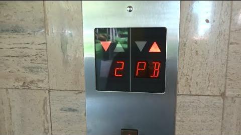 Mitsubishi Elevators - Mayan Palace, West Tower - Puerto Vallarta, Mexico
