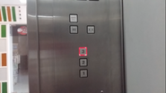 Thyman Rectangular Buttons TrinityMall