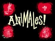 Animales! image1