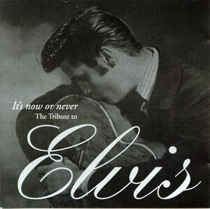 Various artist - its now or never the tribute to elvis