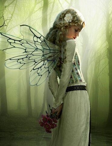 File:Fairy 2.jpg