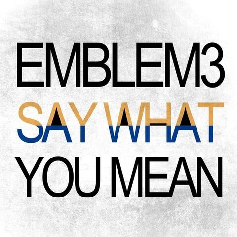 File:Say what you mean.jpg