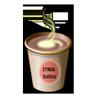 Coffee (B629)