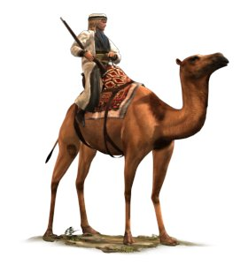 File:Shaturnal Camel Gunners.jpg