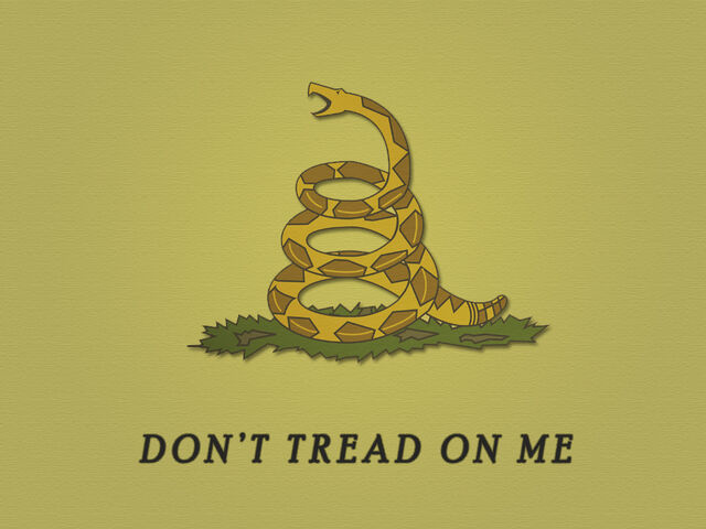 File:Don't-Tread-On-Me-1024.jpg