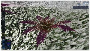 Ningues - Phoenix Fern Frond