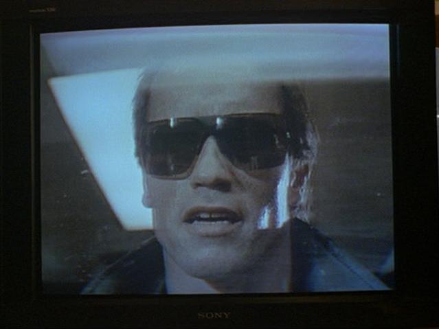 File:Arnold Schwarzenegger.png