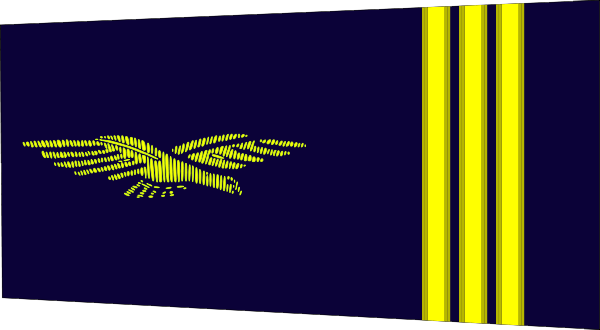 File:French Air Force-captain.png