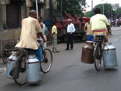 BicyclesMilkChurnsKolkata gobeirne