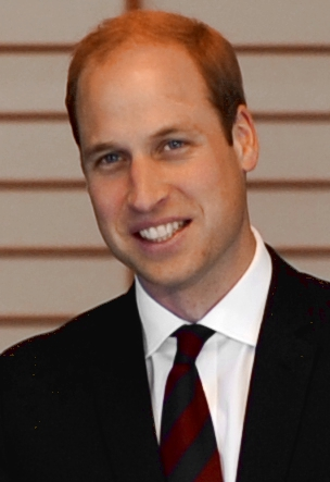File:Prince William February 2015.jpg