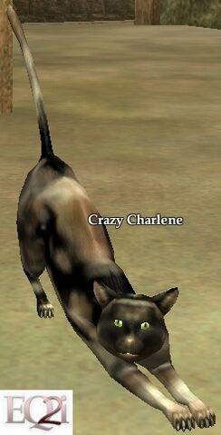 File:Crazy Charlene.jpg