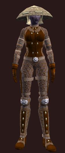 Bodyguard's (Armor Set)