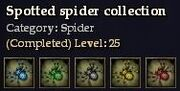 CQ spider spotted Journal