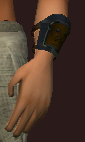 Arctic Frostwind Oracle's Bracers (Equipped)