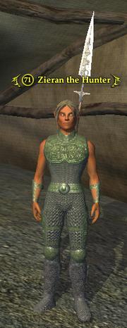 Zieran the Hunter (Wood Elf)