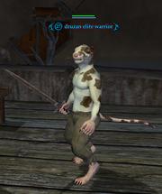 Druzan elite warrior