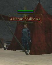 A Nerius Scallywag