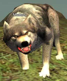 File:Mutton.jpg