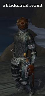 A Blackshield recruit