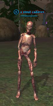 A stout cadaver
