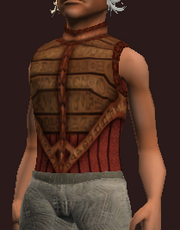 Sacrosanct Tunic of the Forest Scion (Equipped)