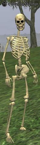 A decaying skeleton