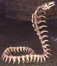 File:Cobra skeleton.jpg