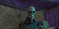 A silent bones troubador