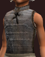 Iron Chainmail Coat (Equipped)