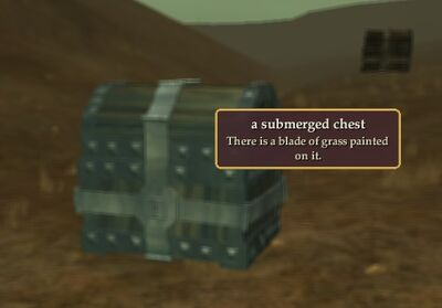 A Submerged Chest