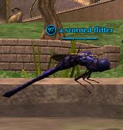 A scorned flitter