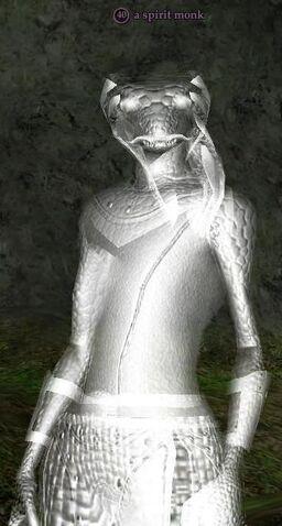 File:A Spirit Monk.jpg