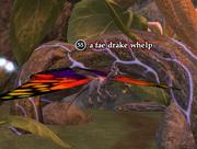A fae drake whelp
